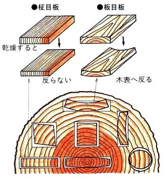 木取りイラスト